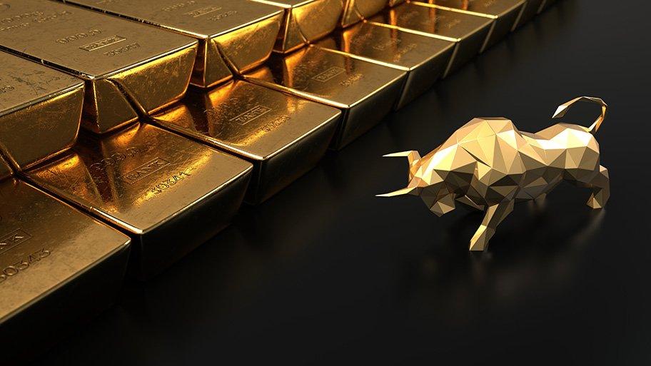 gold bull bars