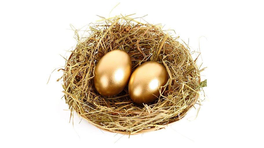 gold IRA nest egg